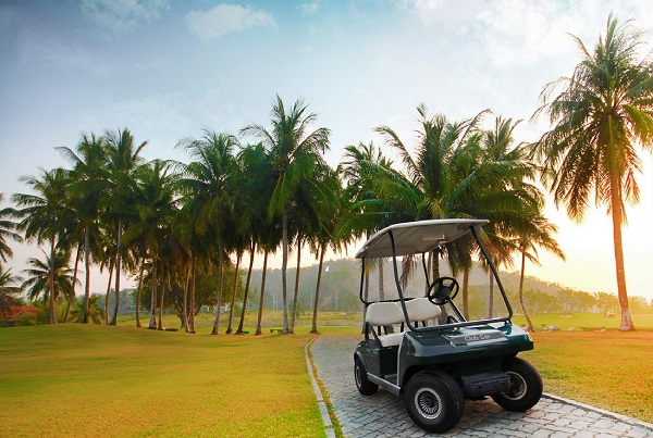 Golf cart at Palm Hills Golf Resort and Country Club